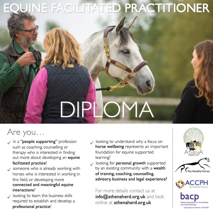 Athena Herd Equine Facuilitated Practitioner