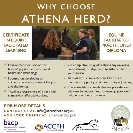 Why Athena Herd